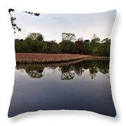 Cattail Swamp I Throw Pillow