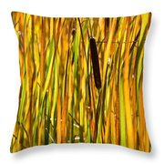Cattails Aflame Throw Pillow