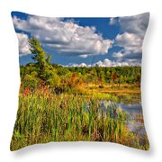 Cattails And Clouds Throw Pillow
