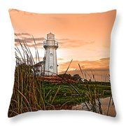 Cattails And Lighthouse In Indiana Throw Pillow