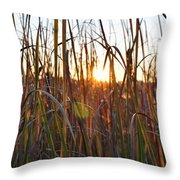 Cattails And Reeds - West Virginia Throw Pillow
