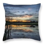 Cattails And Sunset Throw Pillow