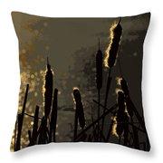 Cattails At Sunset Throw Pillow