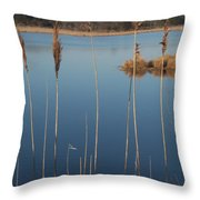 Cattails Cape May Point Nj Throw Pillow
