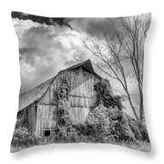 Cattaraugus County Barn 6160b Throw Pillow