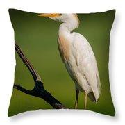 Cattle Egret On Stick Throw Pillow