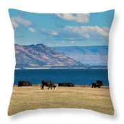 Cattle Grazing At Hawea Lake In Southern Alps In New Zealand Throw Pillow
