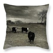 Cattle In The Winter Pasture Series Image 2 Throw Pillow
