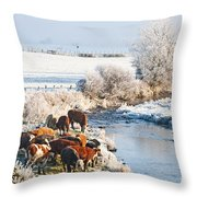Cattle In Winter Throw Pillow