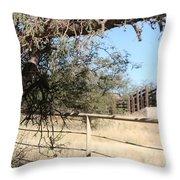Cattle Ramp Throw Pillow