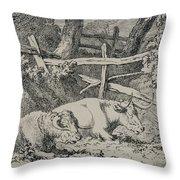 Cattle Resting Throw Pillow