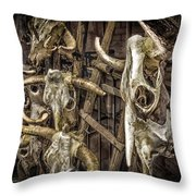 Cattle Skulls On Display In Santa Fe Throw Pillow
