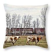 Cattle Train Throw Pillow