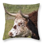 Cattle With Horns Side Portrait Throw Pillow
