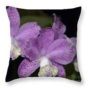 Cattleya Loddigesii 3877 Throw Pillow
