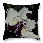 Cattleya Moscombe 'the King'  3 Of 3 Throw Pillow