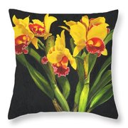 Cattleya Orchid Throw Pillow by Richard Harpum