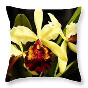 Cattleya Too Throw Pillow
