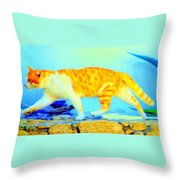 The Noble Art Of Catwalking  Throw Pillow by Hilde Widerberg