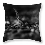 Caught Between A Rock And A Hard Place Throw Pillow