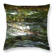 Caught By The Water Throw Pillow