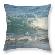 Caught In Time Throw Pillow