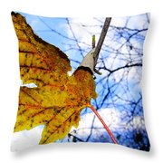 Caught Throw Pillow