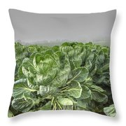 Cauliflowers Throw Pillow