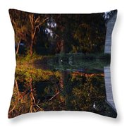 ...causey's Mill... Throw Pillow