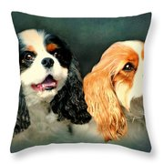Cavalier King Charles Throw Pillow by Diana Angstadt