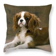 Cavalier King Charles Spaniel Dog Lying Throw Pillow