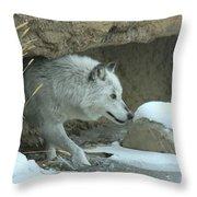 Cave Dweller Throw Pillow