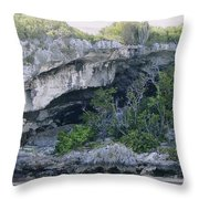 Caves In The Bahamas Throw Pillow