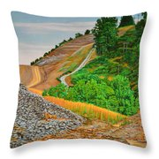 Cavity Throw Pillow