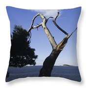 Cavtat Tree Throw Pillow