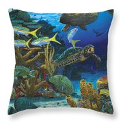 Cayman Turtles Re0010 Throw Pillow