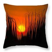 Cayo Grande Palm Tree Sunrise Throw Pillow