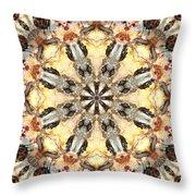 Cecropia Sun 5 Throw Pillow