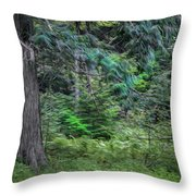 Cedar Along The Trail Of Cedars Glacier National Park Painted Throw Pillow