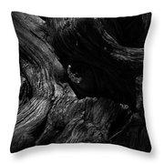 Cedar Burl Number Two Throw Pillow