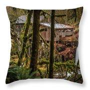 Cedar Creek Grist Mill 2 Throw Pillow