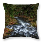 Cedar Creek Horiz. Throw Pillow
