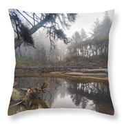 Cedar Creek Lagoon Throw Pillow