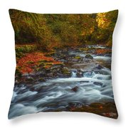 Cedar Creek Morning Throw Pillow