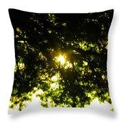Cedar Filtered Sun Throw Pillow