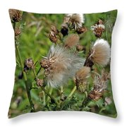 Cedar Flower Three Throw Pillow