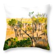 Cedar In The Marsh Throw Pillow