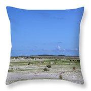 Cedar Island Ponies Throw Pillow