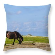 Cedar Island Wild Mustangs 48 Throw Pillow