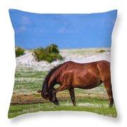 Cedar Island Wild Mustangs 59 Throw Pillow